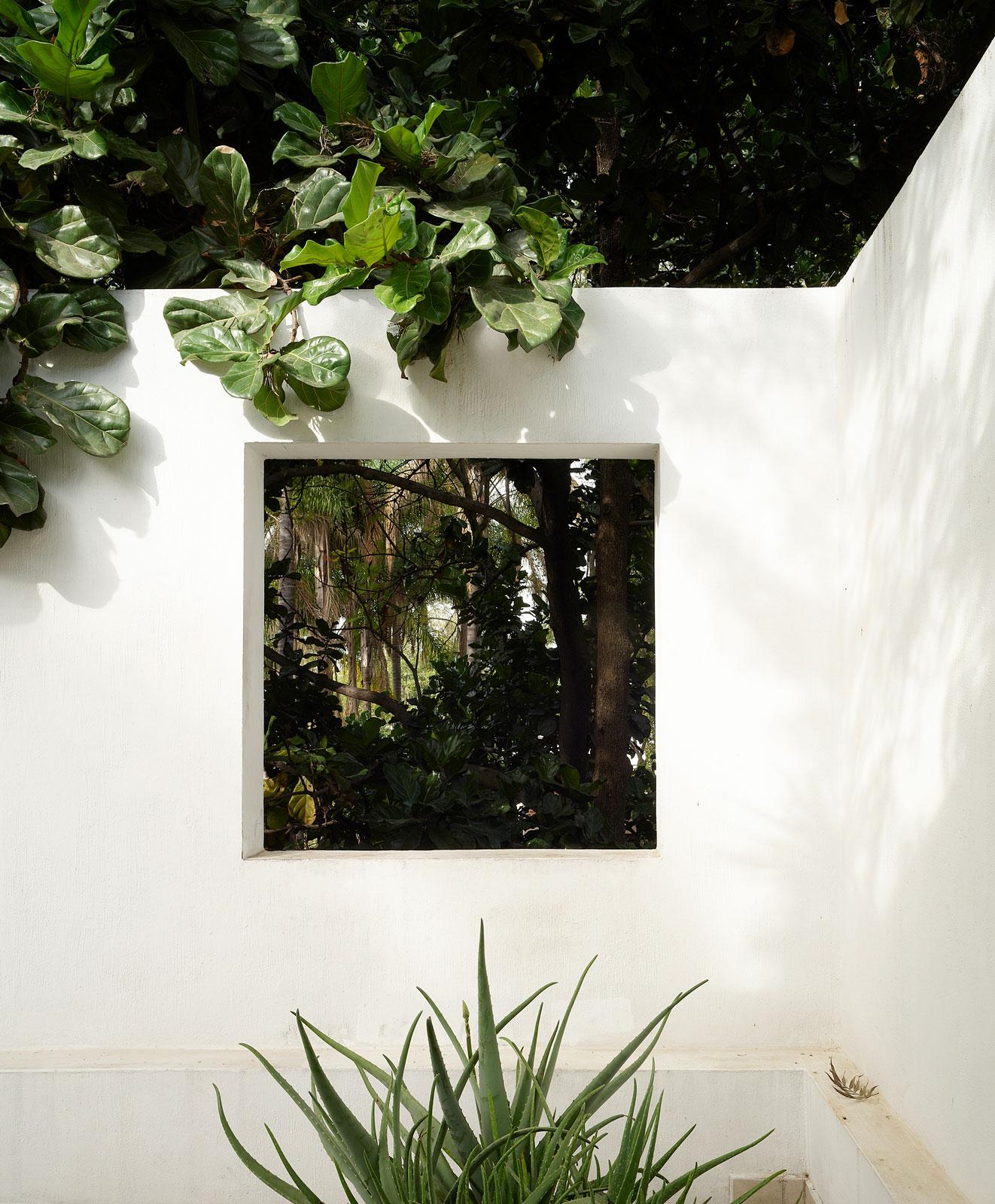 t magazine | guadalajara | seven patios